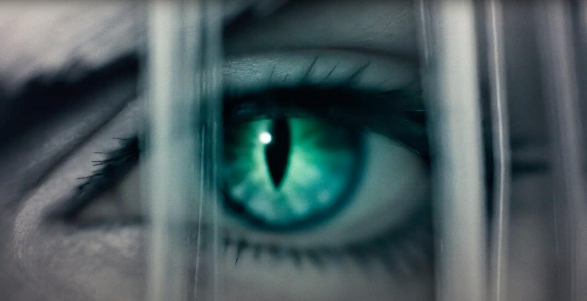 Sephiroth Eye