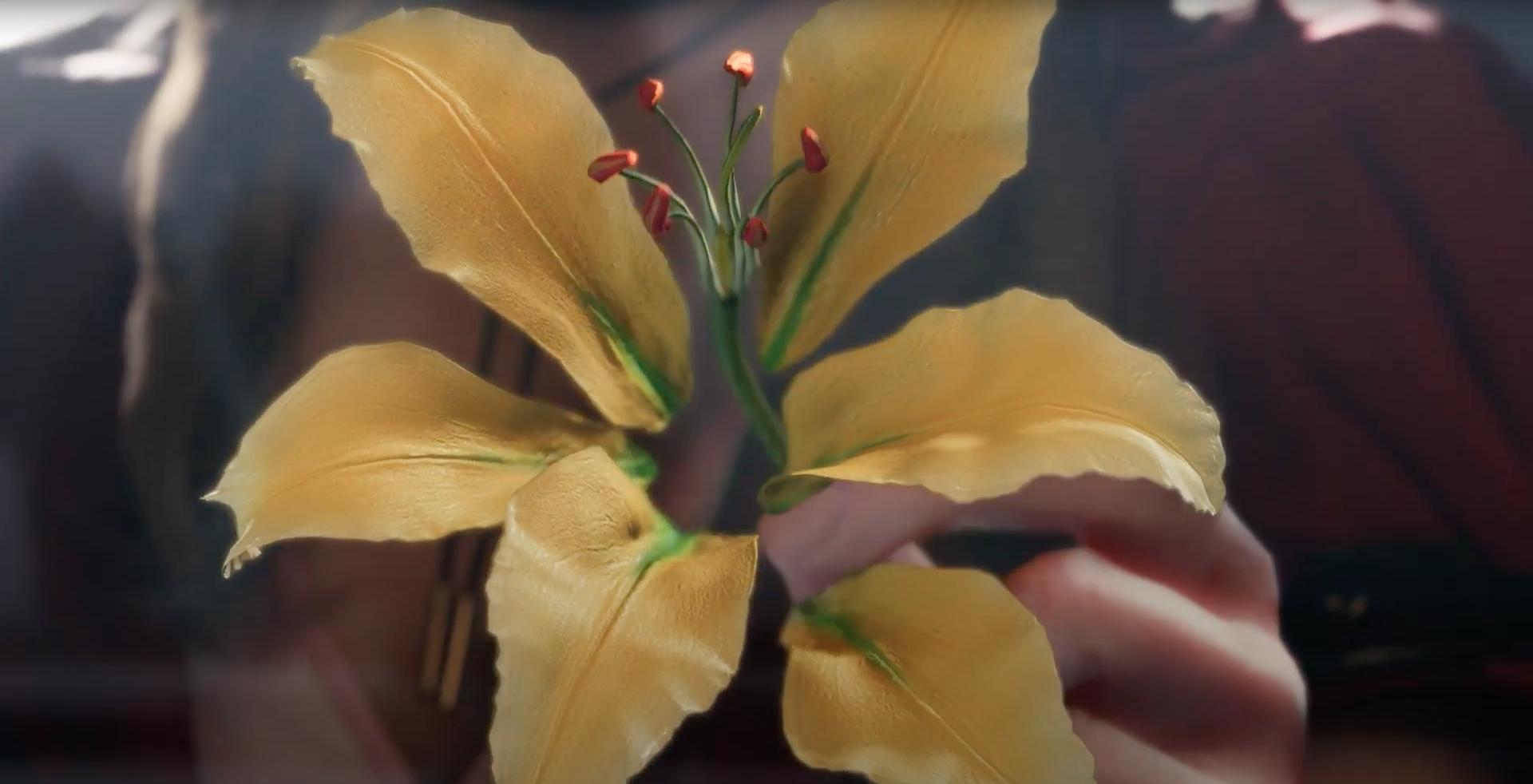 Follow them, the Yellow Flowers